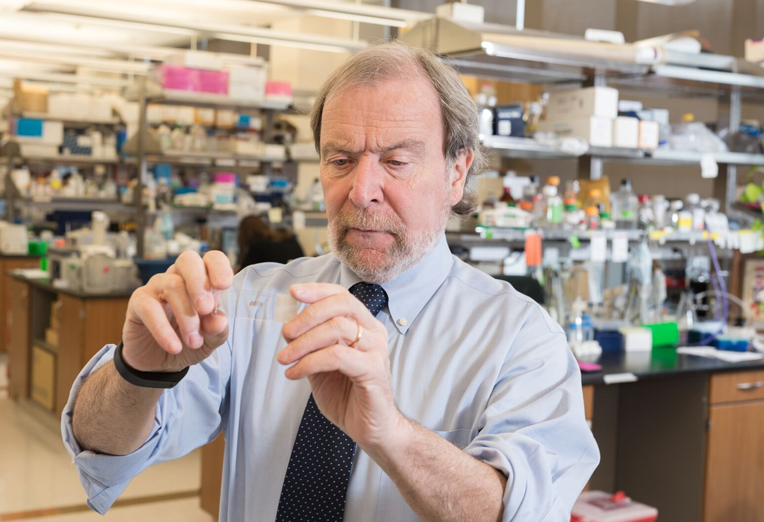 Dr. Peter Davies, a leading Alzheimer's disease researcher, in the lab at the Feinstein Institutes.